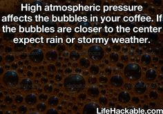 (VIA SANDY) BUBBLES IN COFFEE HELP TELL YOU WHAT THE WEATHER WILL BE. Life Hack