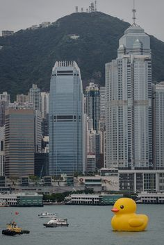 The 16.5-metre-tall inflatable Rubber Duck art installation is seen at the Victoria Harbour in Hong Kong on May 2, 2013. The inflatable duck by Dutch artist Florentijn Hofman will be on display in the former British colony until June 9. (PHILIPPE LOPEZ/AFP/Getty Images)