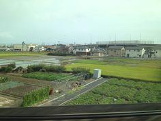 Vue du Shinkansen