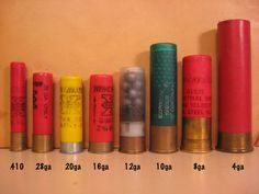 Ammo and Gun Collector: Shotgun Shell Gauge Size Comparison (never actually seen an 8 or 4 gauge, but have shot all the rest) Trap Shooting, Skeet Shooting, Weapons Guns, Guns And Ammo, Reloading Ammo, Magnum, Hunting Guns, Deer Hunting, Home Defense
