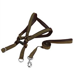 Quno Non Pull Nylon Pet Puppy Dog Harness  Leash Lead Set Adjustable Green XL * This is an Amazon Affiliate link. Read more at the image link.