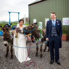 Love this photo by @project.valentine of the lovely Clarissa and Richard taken yesterday at their wedding.  Crackerjack seems pretty determined to take a bite out of that bouquet- to reassure you he didn't- he just wanted to smell it like the rest of us . Wishing Clarissa and Richard lots and lots of happiness for the future  #donkeylove #rusticweddingvenue #donkeywedding #weddingdonkey #quirkyweddingvenue #rusticweddingvenue #farmweddingvenue