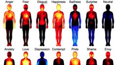 """This """"Body Atlas"""" Shows Where We Feel Love"""