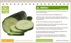 Conoce las grandes bondades del pepino, sus beneficios, sus nutrientes y sus grandes propiedades.