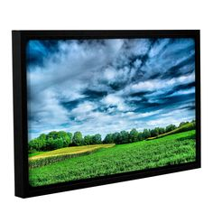 Field Of Dreams by Steve Ainsworth Floater Framed Photographic Print on Gallery Wrapped Canvas