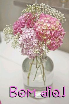 Happy Tuesday, Happy Day, Tuesday Morning, New Pictures, Good Morning, Glass Vase, Messages, Flowers, Pink
