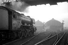 Live Steam Locomotive, Diesel Locomotive, Stockton On Tees, Old Train Station, Steam Railway, Great North, Steam Engine, North Yorkshire, Newcastle
