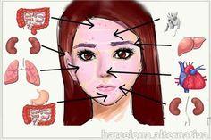 Hay ciencias como la Reflexología, que estudian el mapa del cuerpo, en función…