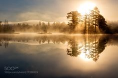 Morning mist by walterurnes
