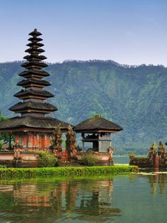 Let's go to Bali!