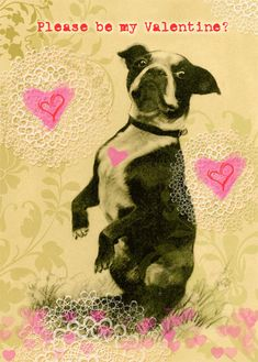Valentine's Day Card Boston Terrier 5 x 7 inches by roxy5235