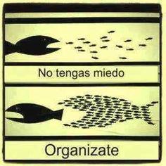 Te ayudamos a organizar tu empresa!  Contactanos en: vitalidad712@gmail.com Siguenos en: www.facebook.com/vitalidad712 www.twitter.com/vitalidad712
