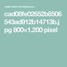 cad08fe02652b8506543ad912b14713b.jpg 800×1.200 pixel