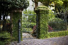 Charleston Historic District Hotels - Hotels in Charleston, SC Historic District