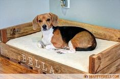 Transcendent Dog House with Recycled Pallets Ideas. Adorable Dog House with Recycled Pallets Ideas. Wooden Pallet Projects, Wooden Pallet Furniture, Pallet Crafts, Recycled Furniture, Furniture Ideas, Pipe Furniture, Furniture Vintage, Furniture Design, Old Pallets