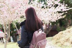 SammdaySoon: Taiwan Solo Travel: Travel Guide and Budget Summary Cherry Blossoms, Solo Travel, Taiwan, Sling Backpack, Travel Guide, Green, Cherry Blossom, Japanese Cherry Blossoms