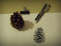 the start of my pine cone drawing