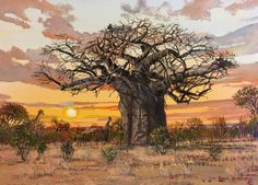 Landscape Paintings Oil Painting - Baobab with Elephant by Errol Norbury