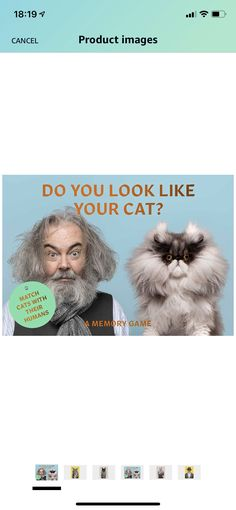 Human Memory, Memory Games, You Look Like, Cats, Image, Gatos, Kitty Cats, Cat, Kitty
