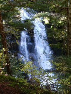 Wonderland Trail, Summer hike