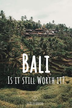Is Bali still worth it? What are the consequences of the masstourism? Should you really visit it? #bali #baliindonesia #balitravel bali reise, bali indonesia, bali beaches, bali travel, bali photography, things to do in bali, bali seminyak, bali ubud, bali food, bali vacation, things to do in bali, beautiful places bali, bali travel tips Bali Travel Guide, Asia Travel, Japan Travel, Travel Guides, Travel Tips, Travel Destinations, Luang Prabang, Travel Reviews, Travel Articles