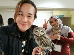 When I was in Osaka, I decided to try a different animal café, since I did the sheep café back in Seoul, Korea, and since I am a huge fan of owls, we decided to visit an owl cafe in Osaka. In Malay…