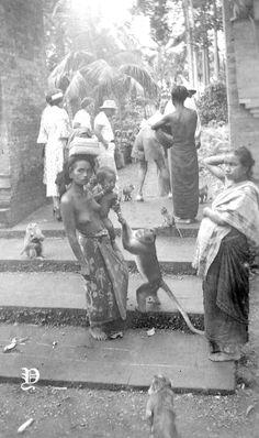 Polynesian Girls, Maluku Islands, Bali Girls, West Papua, Dutch East Indies, Tribal Women, Timor Leste, Borneo, Papua New Guinea