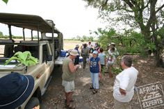 Botswanan safarit Safari, Home Appliances, House Appliances, Appliances