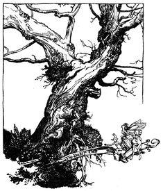 The Duke's oak - A Midsummer-Night's Dream by William Shakespeare, 1908