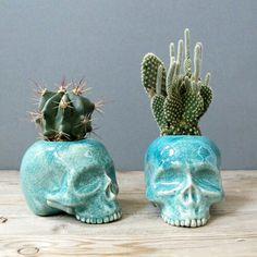 Cool skull planters!