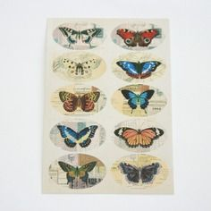 Stickers papillons look vintage brocante modèle n°1