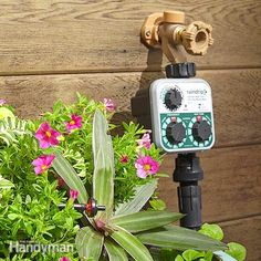 How to Install a Drip Irrigation System in Your Yard: There's an easier way to keep your plants watered, even when your life gets busy or you're away from home—a simple, automated drip irrigation system! These systems are affordable and easy to set up. Water Plants, Water Garden, Potted Plants, Indoor Plants, Micro Irrigation System, Drip Irrigation System Design, Garden Irrigation System, Garden Watering System, Drip System