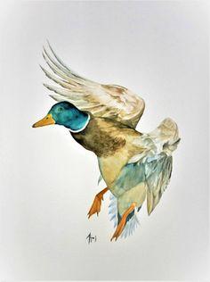 The Mallard duck watercolor painting wild birds art