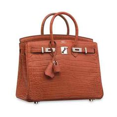A MATTE SANGUINE NILOTICUS CROCODILE BIRKIN 25 WITH PALLADIUM HARDWARE