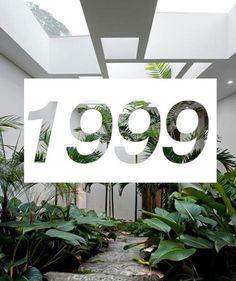 Image via We Heart It #1999 #aesthetic #background #grunge #plant #tumblr #wallpaper
