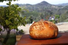 This is my favorite way to make bread. The overnight ferment makes it more digestible, and by baking it in a pot the bread is steamed and rises beautifully. Sourdough Recipes, Thm Recipes, Sourdough Bread, Bread Recipes, Ciabatta, Naan, How To Make Bread, Bread Making, Fermented Foods