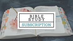 What To Study, New Bible, Old And New Testament, Word Study, Bible Studies, Mornings, Get Started, Ebooks, How To Plan
