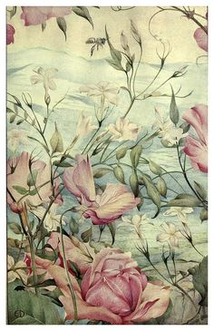 Jazmines-News of spring and other nature studies 1917- Ilustrado por Edward J. Detmold
