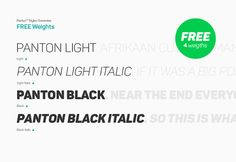 Panton is a font inspired by the classic grotesque typefaces that comes with 4 free weights (Light, Light Italic, Black, Black Italic).