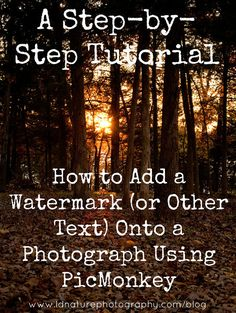 A Step-by-step tutorial: How to Add a Watermark (or Other Text) Onto a Photograph Using PicMonkey #photography #picmonkey #watermark www.ldnaturephotography.com/blog