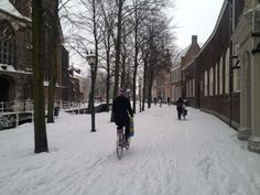 Winter cycling in Delft Winter Cycling, Delft, Beautiful Roses, Holland, Dutch, Ss, Dutch Language, Netherlands