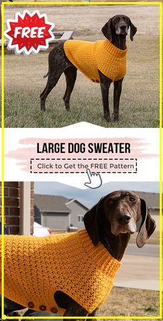Knitting Patterns For Dogs, Crochet Dog Sweater Free Pattern, Dog Coat Pattern, Crochet Dog Patterns, Knit Dog Sweater, Dog Clothes Patterns, Large Dog Coats, Large Dog Sweaters, Large Dogs