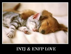 INTJ and ENFP Love ~ People don't get us, but we do...