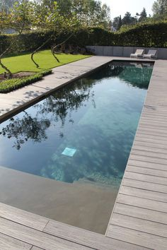 Swimming Pool Landscaping, Swimming Pool Designs, Backyard Pool Designs, Small Backyard Pools, Modern Pool And Spa, Small Garden Landscape, Natural Swimming Ponds, Outside Pool, Swiming Pool