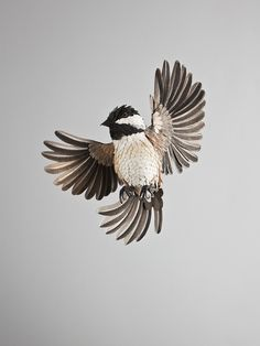 Colombian artist, Diana Beltran Herrera has been using paper to sculpt birds from all over the world.