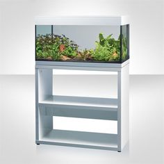 Fluval Pure XL 25 Gallon Aquarium Set with White Stand 15086 @ Fish Tanks Direct Aquarium Set, Aquarium Stand, Shelves, Fish Tanks, Pure Products, House Ideas, Painting, Home Decor, Art