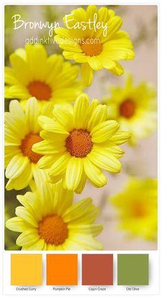 Colour Combinations for Daisy Delight – Part A – addinktive designs