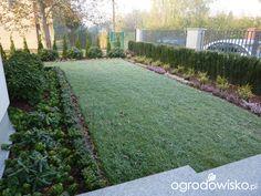Przedogródek - strona 4 - Forum ogrodnicze - Ogrodowisko Sidewalk, Rock, Container Plants, Gardens, Pavement, Curb Appeal