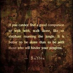 "Buddha  |  ""It is better to be alone that with those who hinder your progress""... and very likely that you will find a new tribe along your journey."