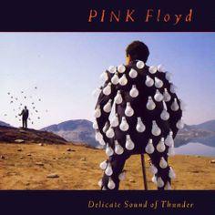 Pink Floyd - Delicate Sound of Thunder http://pinterest.com/recordsonwalls/pink-floyd-album-art/